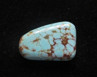 Number 8 Turquoise Spider Web Free Form Cabochon 10.5 Carats 20x13x5 mm