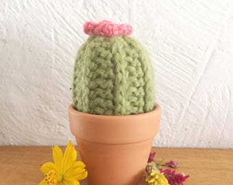 Mini Crochet Cactus 'Double Trouble' in Pistachio with crochet flowers and terracotta pot.