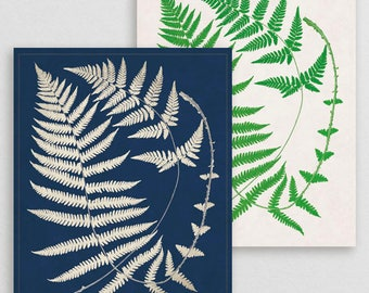 Classic Fern XX- Botanical Decor- Botanical Gifts- Prints for Decor- Botanical Art- Ferns- Nature -Vintage -Vintage Prints -Vintage Art