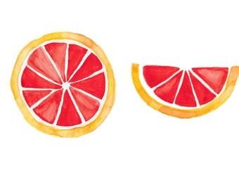 Grapefruit Watercolor Painting- Print