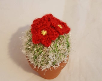 Crochet Cactus / Red Flowered Cactus / Succulent/ Crochet Plant