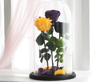 Three Beauty and the beast rose (Huge), Enchanted Rose, Rose in glass dome, Forever purple rose, Rose in Glass, preserved rose, Belle rose