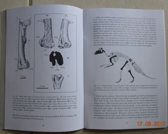 Dinosaurs - six autographed prints of science prints and bones