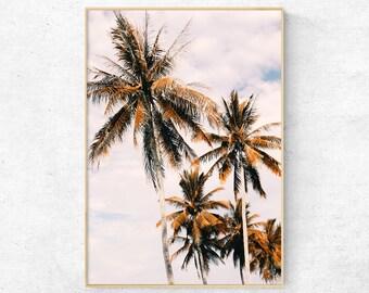 Palm Tree Wall Art, Palm Tree Photograph, Beach Prints, Coastal Style  Prints,