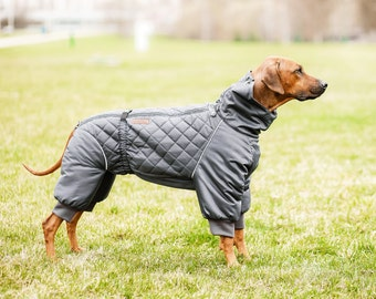 Dog Snowsuit. Winter Clothes for dogs. Dog Full Body Suit. Warm Winter Jacket. Dogs winter overall. Custom Made Dog Apparel.