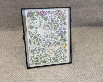 Genuine vintage framed botanical drawing, flower illustrations, botanical print, floral, in glass frame, Green leaves Purple yellow