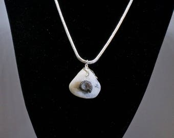 Perfect little ammonite pendant