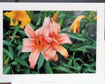 PHOTO GREETING CARD, nature photography, blank card, photo note card, birthday card, special occasion note card, for her as for him, Daylily