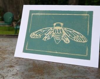 Dog Day Cicada cards  (Set of 5)
