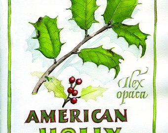 Greeting card with American Holly