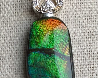 Ammolite Pendant, Petite Multi-Color