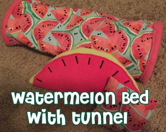 Watermelon Bed with Tunnel for Guinea Pigs and Hedgehogs + Free Pillow!