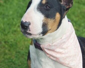 Pink Paisley Dog Bandana for Collars [SIZE LARGE]