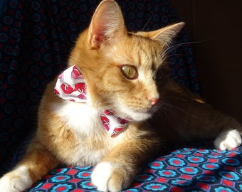 Bow tie cat with heart