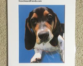 Beagle Puppy Print