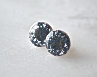 Blue Queen Anne's Lace Earrings Pressed Flower Jewelry Botanical Stud Earrings