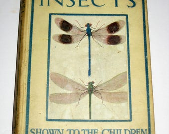Vintage British Children's Book - Insects Shown to the Children