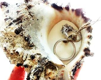 RING PILLOW BEACH Seashell Wedding Ring Holder Shell Ring Bearer Holders Bowl Dish Wedding Pillow Alternative Beach Wedding Theme Sea Shell