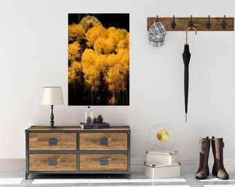 Aspen trees fall, fall tree photo, aspen tree decor, Colorado art, rustic wall decor, log cabin art, fall leaves photo, landscape nature art