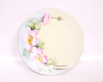 Vintage Pink Wild Rose Plate Silesia Pastel Roses Hand Painted German Collector Plate Porcelain Made in Germany Pink and Blue