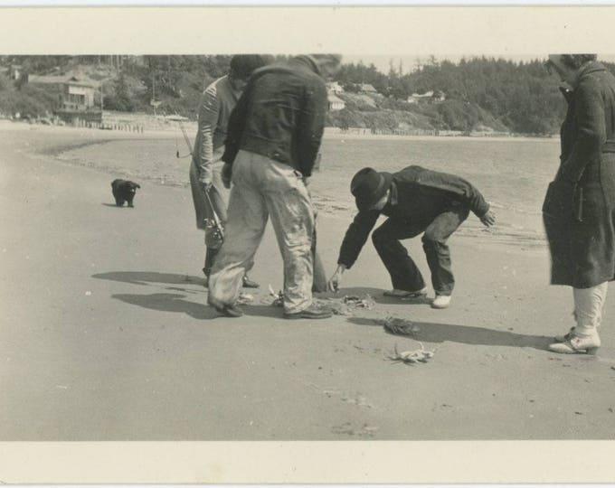 Vintage Snapshot Photo: Crabs  (81634)