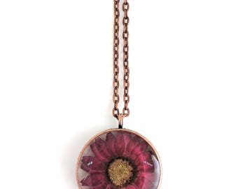 Maroon Daisy Resin Pendant Necklace - Real daisy encased in resin with open back copper bezel, Pressed Flower Jewelry, Resin Jewelry