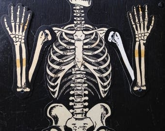 Vintage Halloween Articulated Skeleton Jointed HE Luhrs Beistle Old Bones Decor Display Mid Century Spooky Collectible
