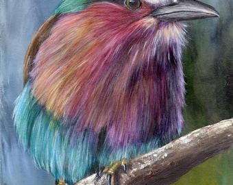SALE Bird Painting Art Lilac Breasted Roller SFA Wildlife Original hand painted bird acrylic painting by Australian Artist Janet M Graham