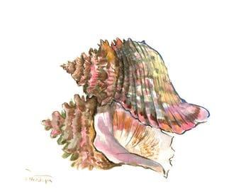 Seashell, one of a kind original watercolor painting 10 x 8 in, brown sahara bathroom watercolor art