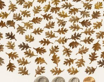 100 Oak Leaves, Mini Oak Leaves, Tiny Oak Leaves, Natural Dried Oak Leaves, Real Oak Leaf, Pressed And Cut Small Oak Leaves, Craft Supply