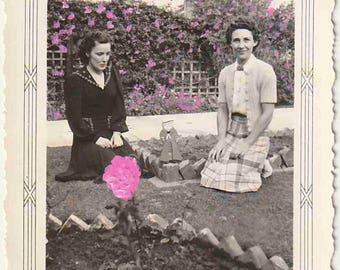 The Pink Garden