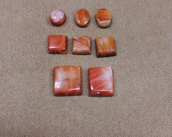 55% OFF Orange Spiny Oyster Shell Cabochon Set/ backed/ seconds/ square/circle/rectangle