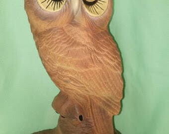 Airbrushed Owl