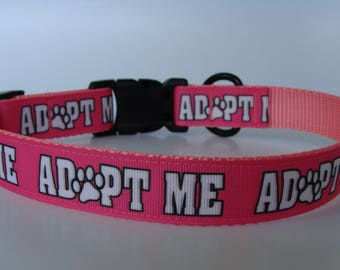 Just Dog Gone Cute Pink Adopt Me Dog Collar and Leash - Ready to Ship!