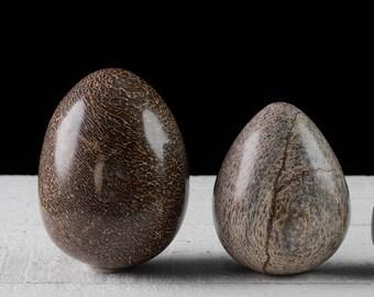 One Medium or Large DINOSAUR BONE Carved Egg - Dinosaur Fossil Rock, Stone Egg, Fossil Gift, Carved Bone Gift, Fossil Specimen E0668