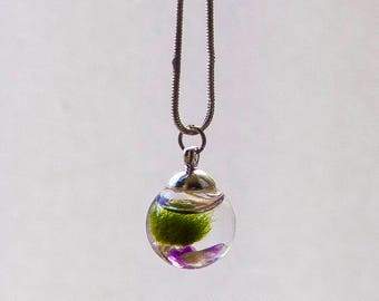 Living Marimo Moss Ball Terrarium Jewelry with Amethyst Wearable Marimo Jewelry Living Plant Necklace Personalized Birthstone Gift for Her