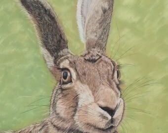 Hare A3 print
