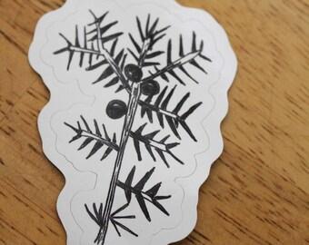 Juniper Sprig Weatherproof Sticker  - Vinyl Sticker - Laptop Decal - Outdoor Sticker - Art Decal - Environmental Sticker - Southwest Sticker