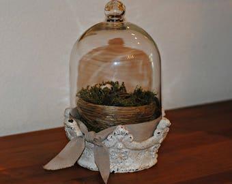 Bird Under Glass, Bird Sitting on a Nest Under Glass Dome, Nesting Bird Under Glass Cloche, Animal Decor, Country Decor