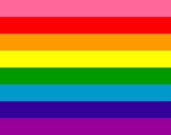 Original 8-Stripe, Rainbow Pride Flag 3' x 5' Flag, Hot Pink, Red, Orange, Yellow, Green, Turquoise, Royal Blue, Purple, Custom Sizes Avail