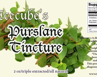 Icecube's Triple-Extracted Purslane Tincture -- 2 oz. bottle