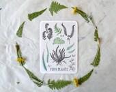 Fern Plants - Card