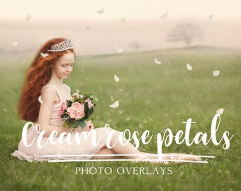 30 Cream Rose Petal Photo Overlays, png overlays, rose petal overlays, spring overlays, rose overlays, photoshop overlays