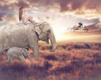 Digital backdrop, Background, photography, Animal background, Elephants, Instant download, Editing,
