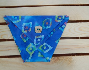 Small Triangle Pouch