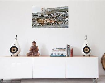 Canvas Digital Prints and Fine Art Paper  Prints, Acrylic Fluid Painting