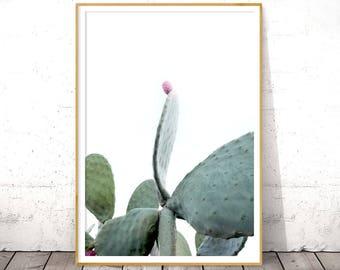 Cactus Print, Large Cacti Wall Art, Pastel Cacti, Southwestern Print, Bohemian Home Decor, Desert Cactus Photo, Instant Download, Mint Green