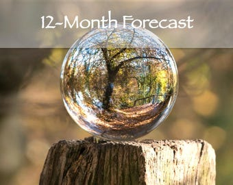 12-Month Forecast