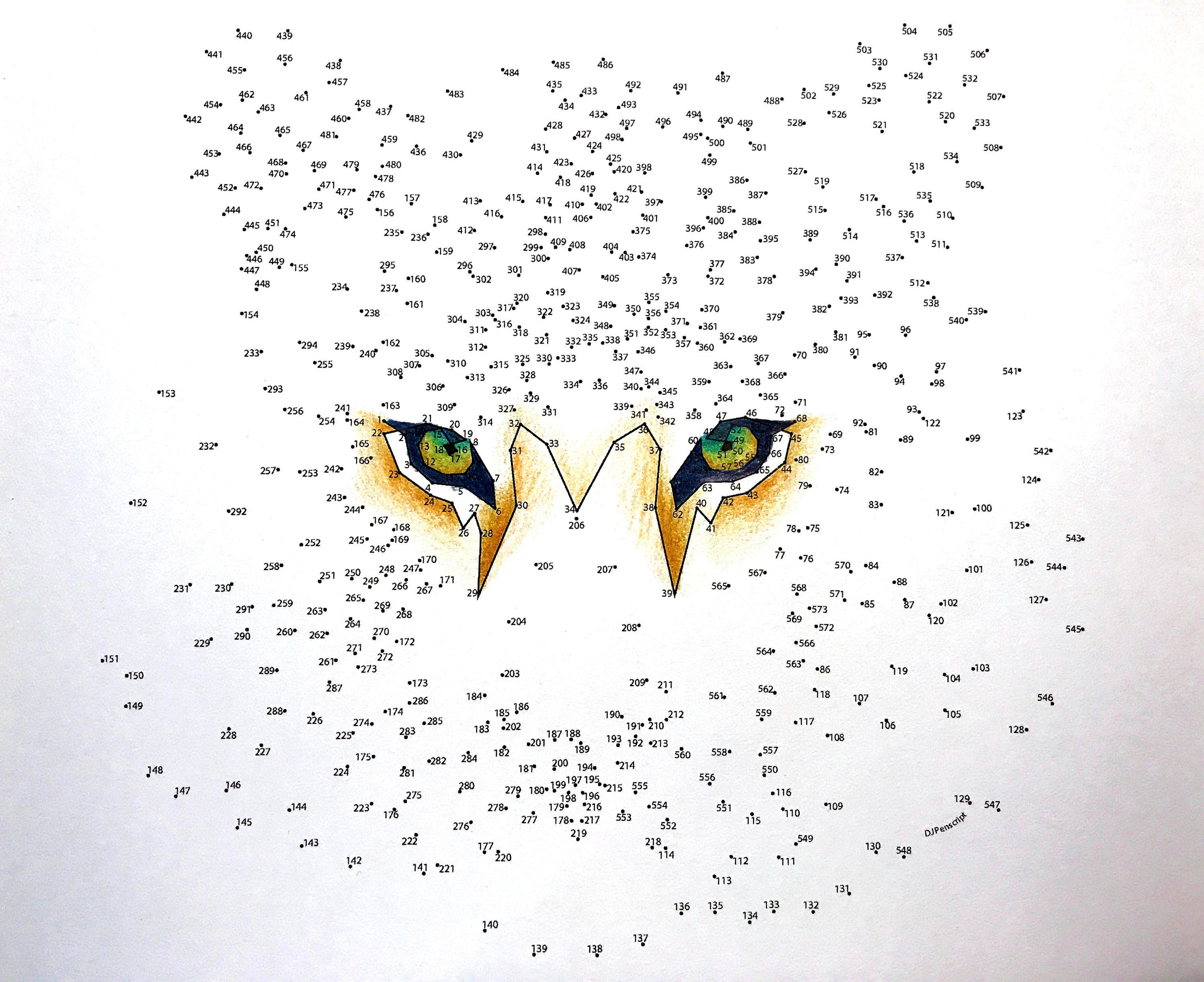 tiger extreme dot to dot pdf activity and coloring page