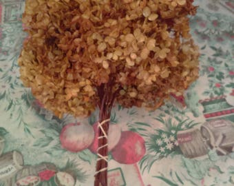 Dried Hydrangea Flower Bunch